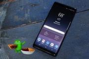 Galaxy Note 8 មួយចំនួនកំពុងចាប់ផ្តើមទទួលបាន Android Pie ហើយ